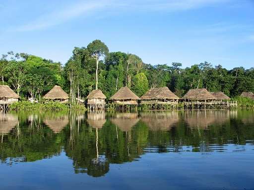 amazon rainforest tours