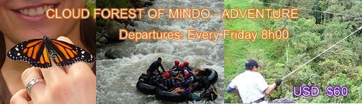 mindo cloud forest tours travel to ecuador
