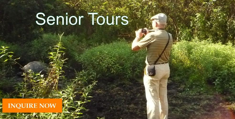 Best Trips for Senior Travelers